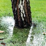 emergency drainage services in surrey, sussex and hampshire